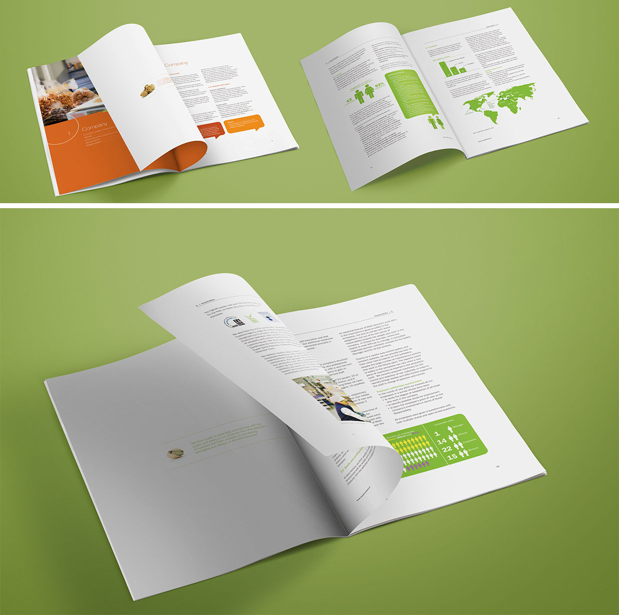 Sustainability report for Madi Ventura